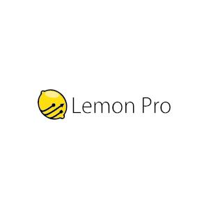 Opieka Informatyczna - LEMON PRO